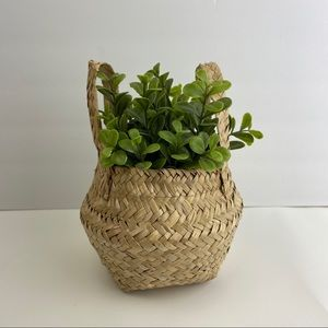 NWT Small Pop Up Belly Planter Straw Basket